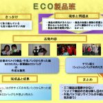 12_eco